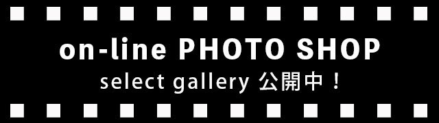 on-line PHOTO SHOP select gallery